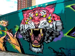 Tiger-Poster copy - small v2